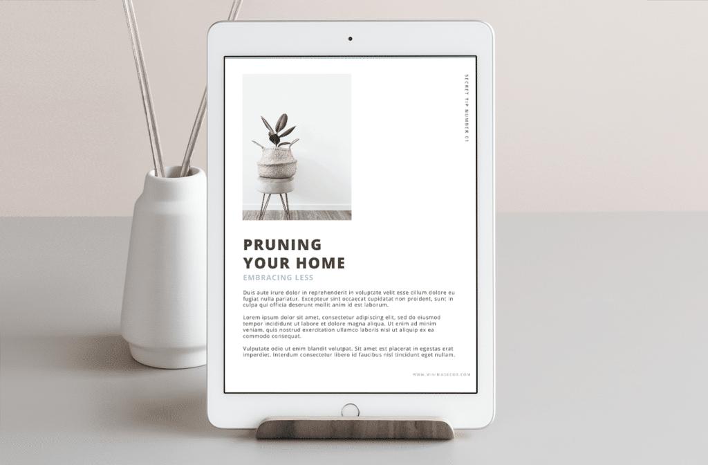 Minima Design Lead Magnet Page Design